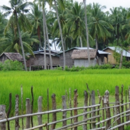 Land Governance and Rural Transitions